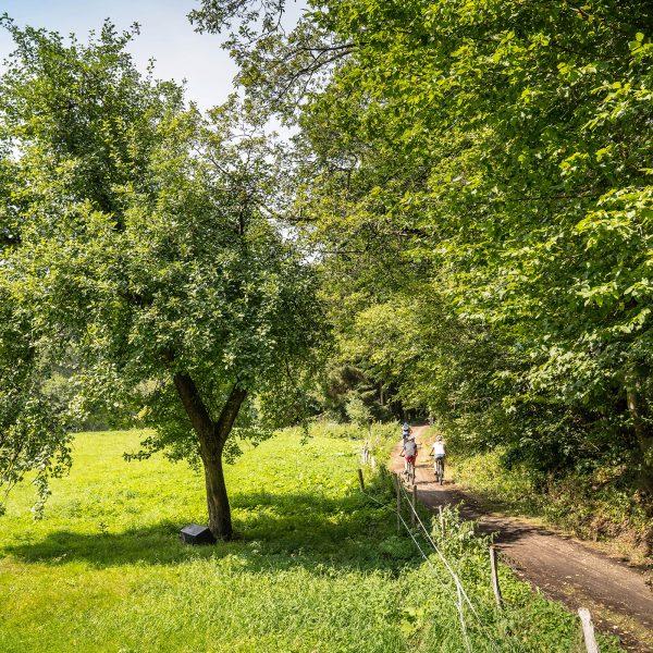 RurUfer-Radweg