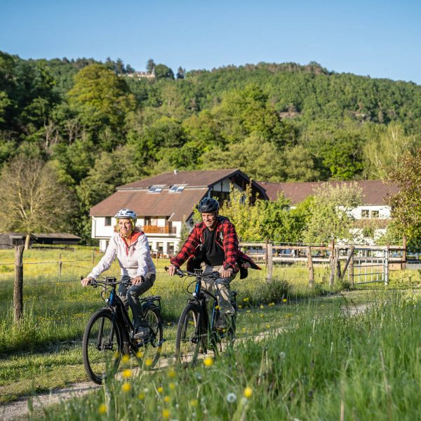 RurUfer-Radweg (Kalltal)