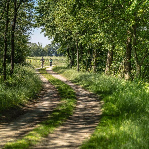 RurUfer-Radweg (Brachelen)