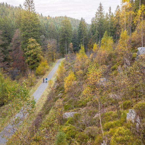 RurUfer-Radweg (Naturpark Eifel)